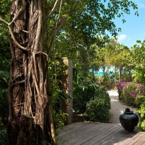 Donna Karan Sanctuary Parrot Cay Beach Path & Shower