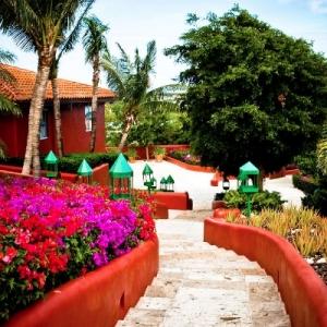 Bajacu Wedding stairway