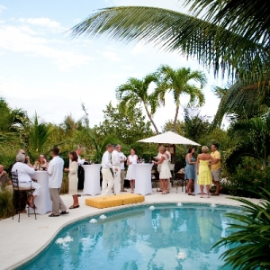 Fleur de Lys Villa wedding reception