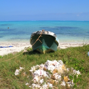 Blue Hills Beached Blue Boat