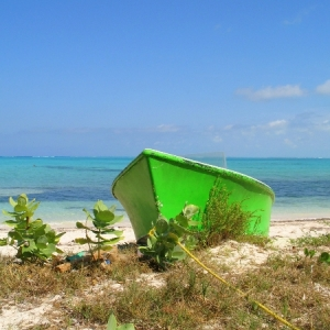 Blue Hills Beached Green Boat