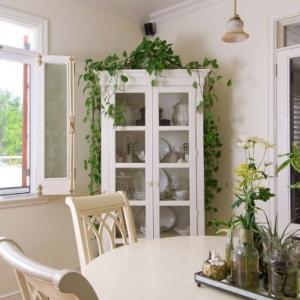 kitchen-cabinet Fleur De Lys Villa