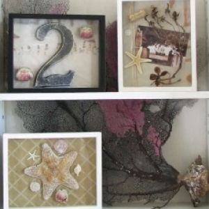 Organic Shadowboxes