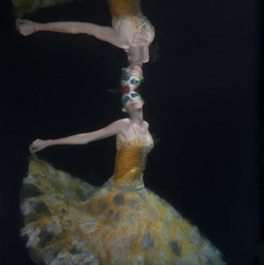 david-gallardo-underwater-fashion-13