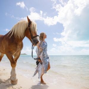 Horse_LongBay_0038