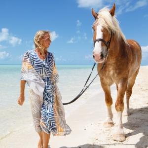 Horse_LongBay_0065