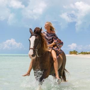 Horse_LongBay_0081