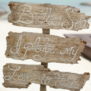 Well Read Rustic Wedding Styled Shoot By the Sea Driftwood Sign