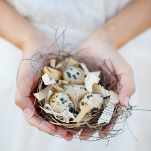 Well Read Rustic Wedding Styled Shoot Nest with speckled eggs