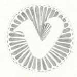 vimeo icon 1