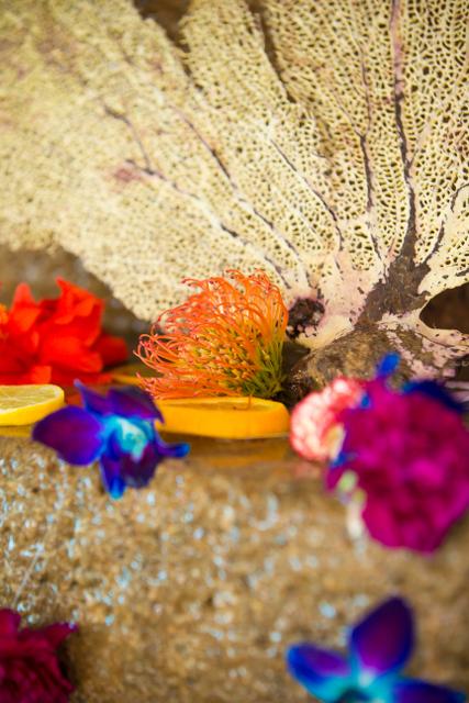 Bajacu Bohemian bright blooms and sea fans