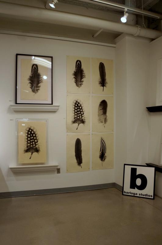 Barloga Studios